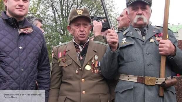Пальчевский возмутился молчанием евреев на восхваление дивизии СС «Галичина» на Украине