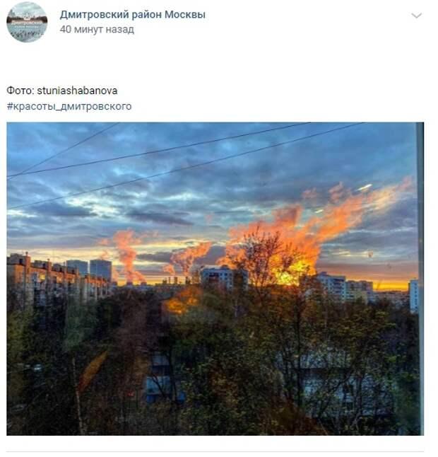 Фото дня: краски апрельского заката в Дмитровском