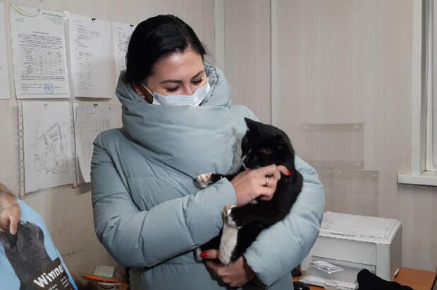 Найденный в мусоре кот стал замминистра Ульяновской области