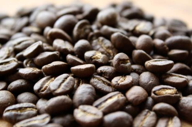 Самый дорогой кофе в мире делают из...