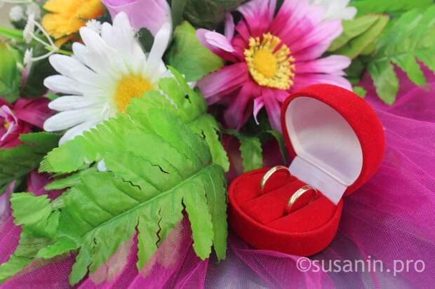 67 пар планируют сыграть свадьбу в Удмуртии в «красивую» дату 20 февраля