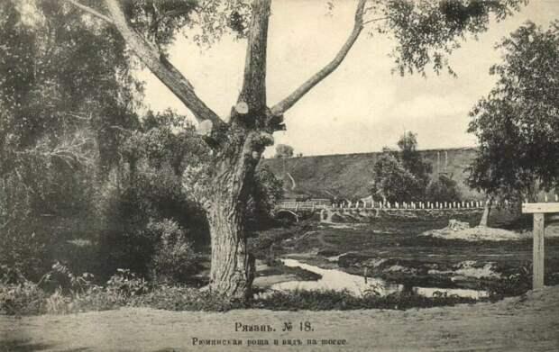 Рюминская роща. История главного парка Рязани