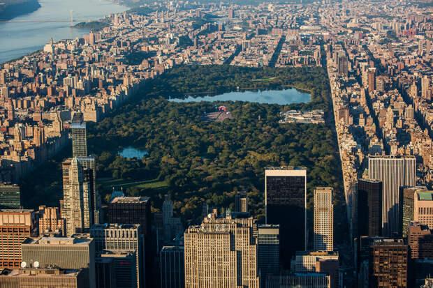 США. Нью-Йорк. Центральный парк. (Anthony Quintano)