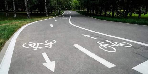 Велодорожка. Фото: mos.ru
