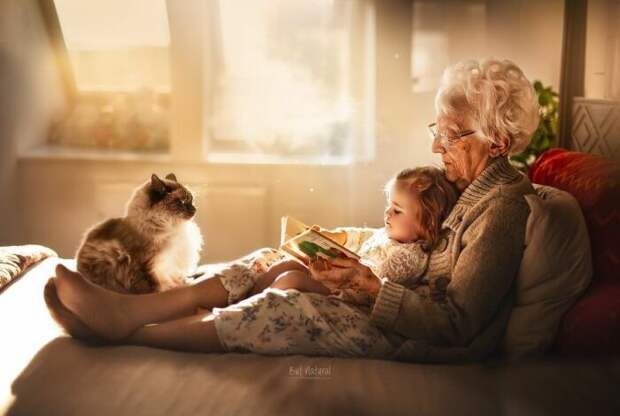 Счастливые моменты общения бабушек и дедушек с внуками  запечатлены на фото