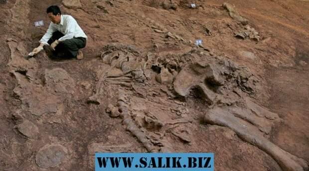 Когда вымерли динозавры?