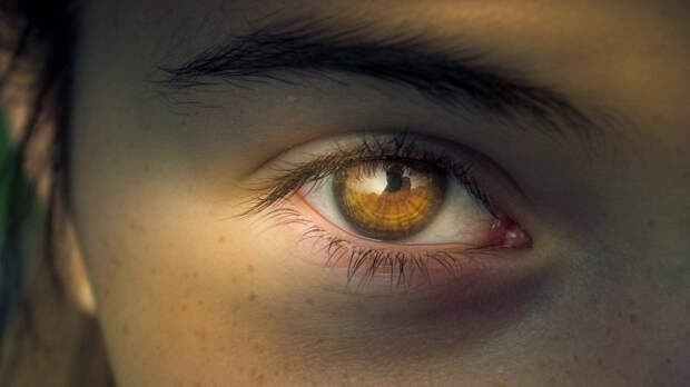 Разработан пластырь для восстановления сетчатки глаза