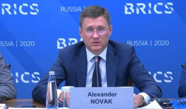 Новак пригласил партнеров поБРИКС вАрктику