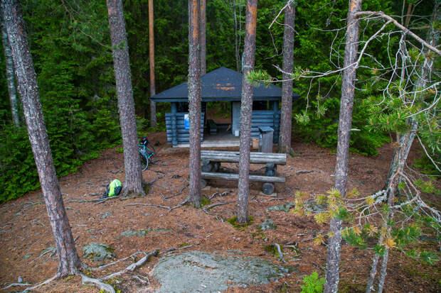 Как вФинляндии избавились отмусора наприроде илесных пожаров