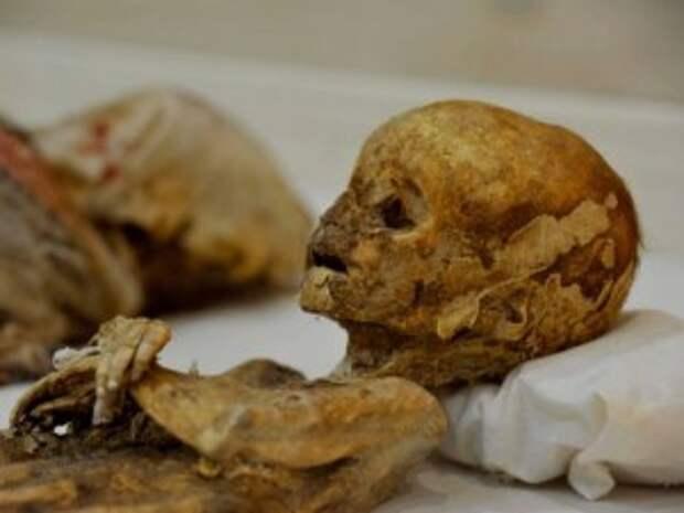 В Турции обнаружены уникальные мумии