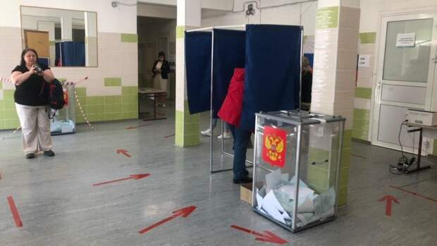Политолог Елисеева назвала триумфальным результат голосования по поправкам