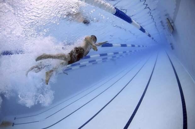 В Южнопортовом проведут окружные соревнования по плаванию