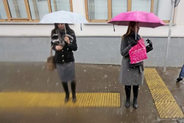 Синоптики предупредили москвичей о дожде со снегом 24 октября