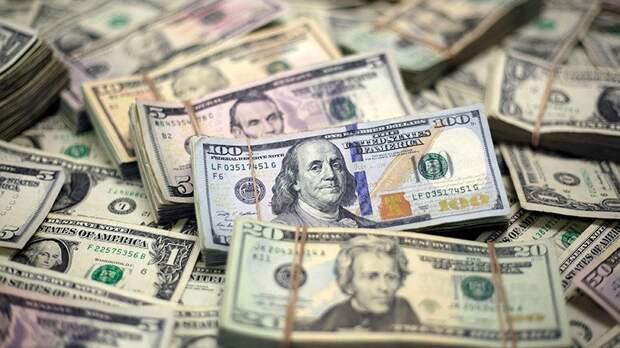 В какие отрасли вкладывает деньги посольство США, спонсируя Украину