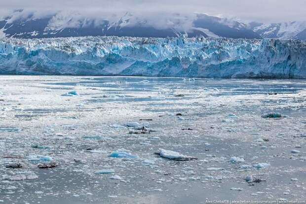 Alaska41 Такая впечатляющая Аляска
