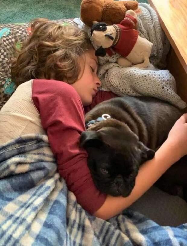 Мальчик спит с собакой