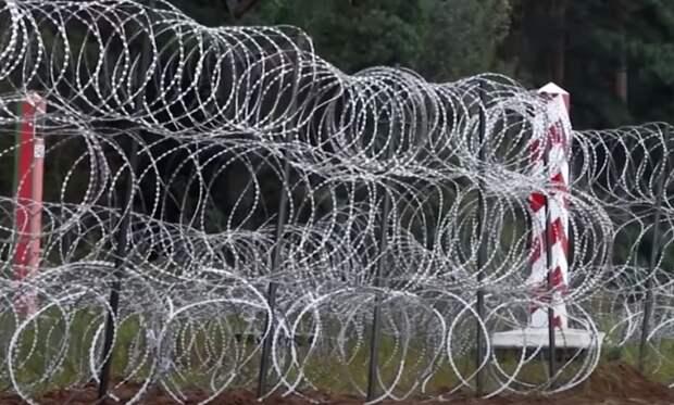 «Для защиты от Путина и Лукашенко»: Польский премьер обосновал строительство забора на границе с Белоруссией