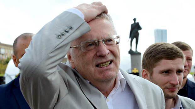 Лидер старый, отряд голубой. Две причины провала ЛДПР на выборах в Госдум