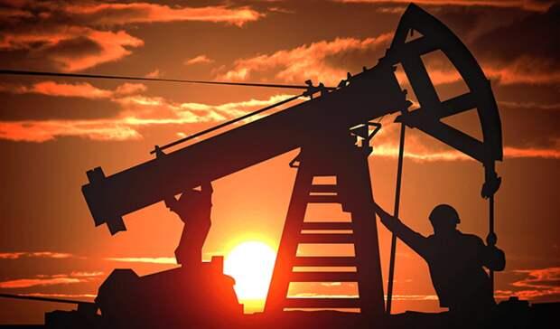 Резко сократила добычу иэкспорт нефти РФзапервые два месяца 2021