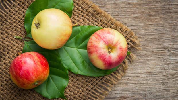Яблоки для нормализации давления