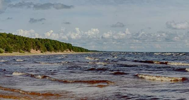 На дне Чудского озера обнаружен камень, возле которого могло проходить Ледовое побоище