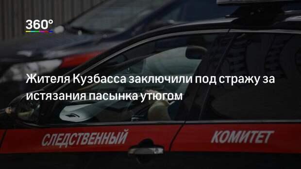 Жителя Кузбасса заключили под стражу за истязания пасынка утюгом