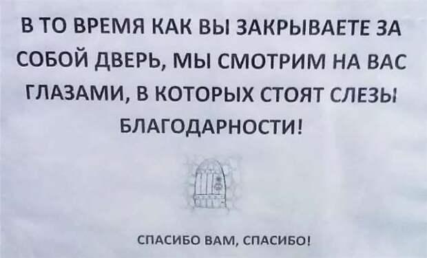 Прикольные вывески. Подборка chert-poberi-vv-chert-poberi-vv-02220111072020-10 картинка chert-poberi-vv-02220111072020-10
