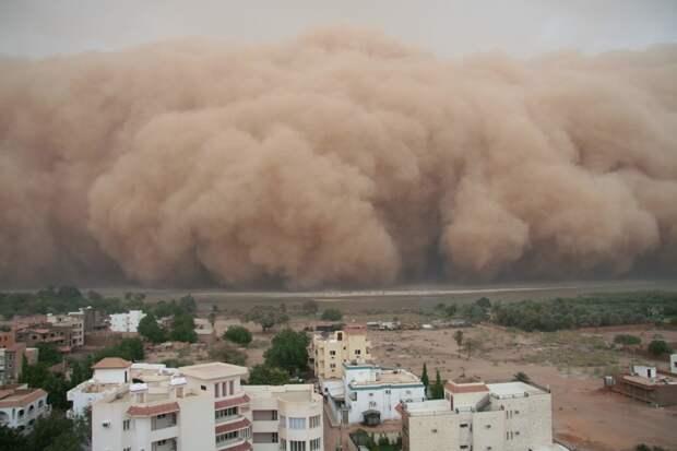 Песчаная буря интересное, катастрофы, природа