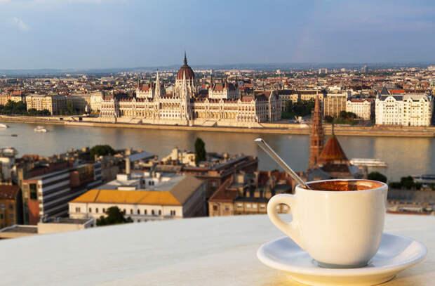 Они не пьют чай в мире, венгр, закон, интересно, люди, познавательно, правило, русский