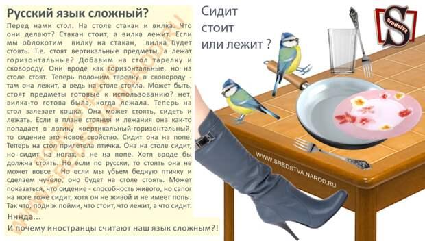 Сидит, стоит или лежит? Почему иностранцы считают Русский язык сложным наш язык, русский язык, сидит стоит или лежит, сложный русский язык, факты
