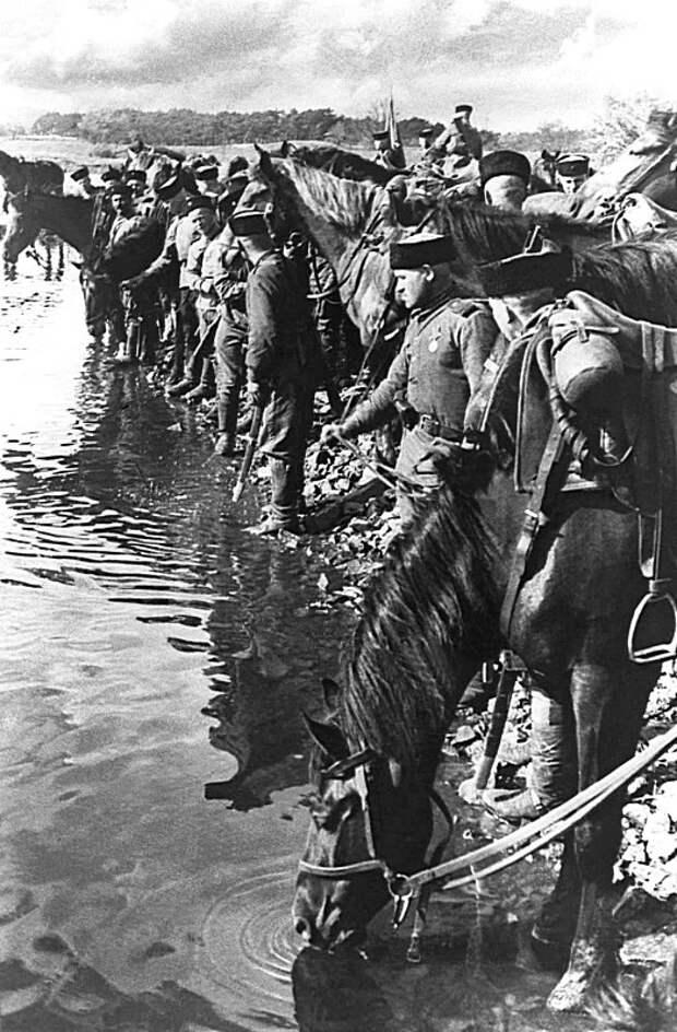 Казаки гвардейского кавалерийского корпуса поят своих лошадей во время встречи с частями американской армии в Германии. СССР, война, история