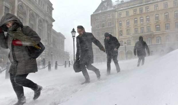 Выбор за вами: «Газпром» позволил Европе самой решить, мерзнуть ли этой зимой