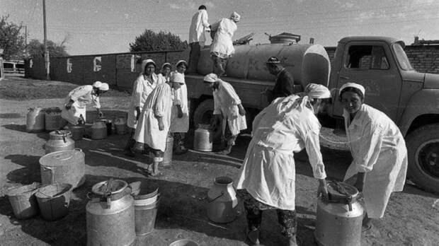 Снабжение населения крупных городов молоком в СССР производилось организованно, под строгим санитарным контролем.