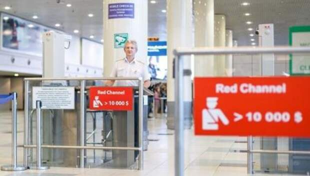 434 тыс человек проверили в январе в ходе санитарного контроля в аэропортах в Подмосковье