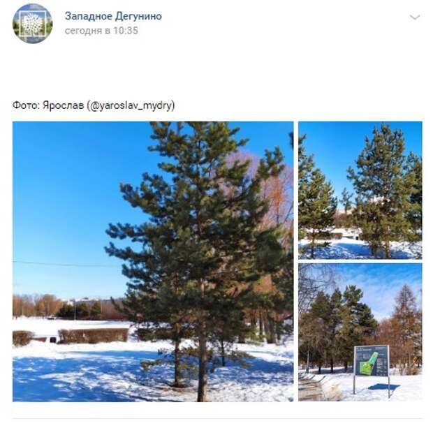 Фото дня: весенняя погода на Ангарских
