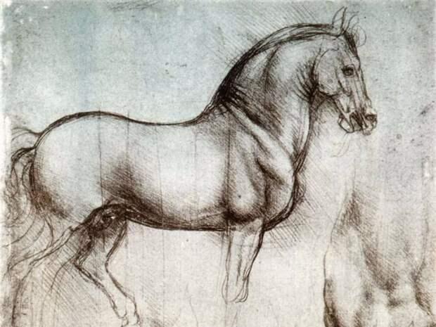 Леонардо да Винчи: Рисунок лошади.\ Фото: thestrip.ru.