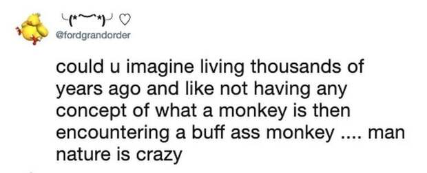Интернет удивила обезьяна-бодибилдер из финского зоопарка