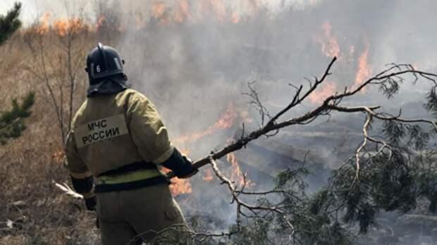 В Удмуртии объявили о начале пожароопасного сезона