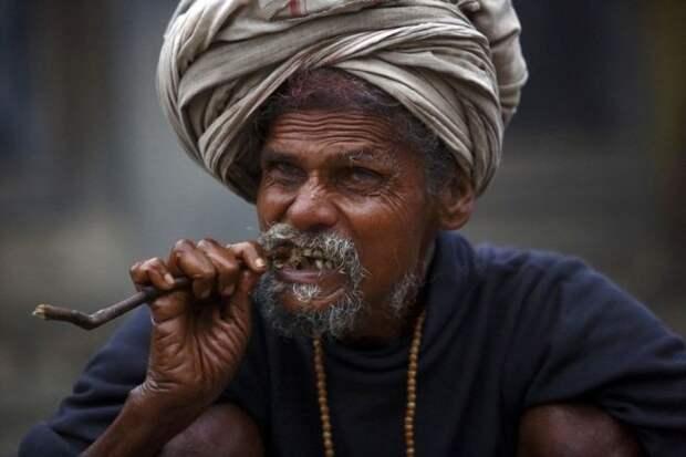 Индус грызет палку