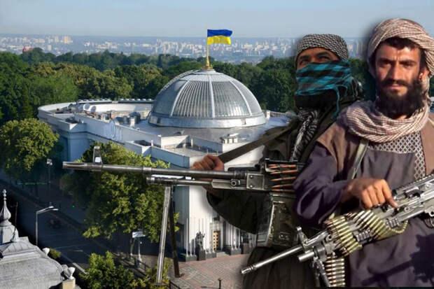 Как Украина на словах и на деле поддерживает терроризм