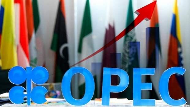 Аналитики позитивно оценивают встречу ОПЕК+