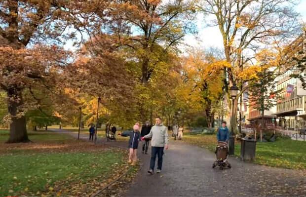 Осеннее равноденствие: главные обычаи, что можно делать и чего лучше избегать в этот день