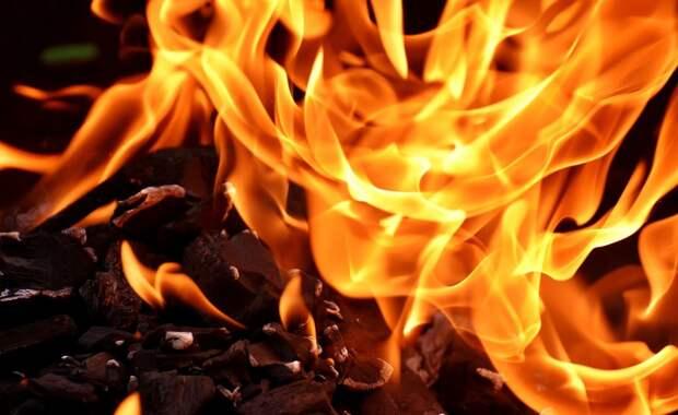 Почти 40 тысяч квадратных метров лесов сгорело в Крыму