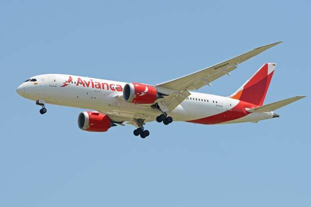 Летевший в Колумбию самолет едва не рухнул из-за новогодних украшений