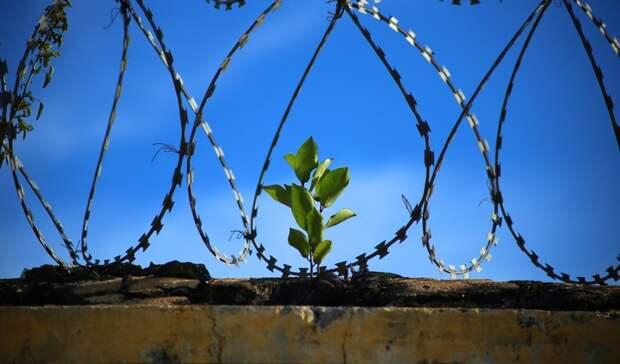 В тюрьмах Ростовской области резко выросла смертность