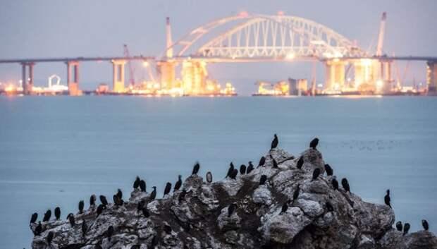 Мэр французского города мечтает попасть на Крымский мост