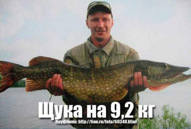 О рыболове и щуке, весом в 21 килограмм