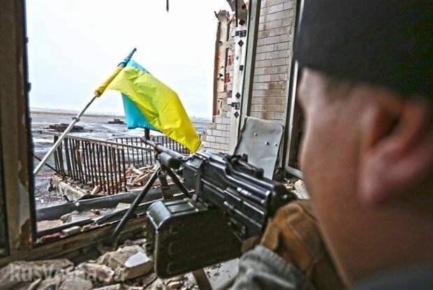 Киев прикрыл сдачу аэропорта Донецку отправленными на убой «киборгами» украина, донбасс