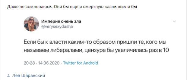 Анна Долгарева: Не вошло в поправки — государство должно карать педофилов
