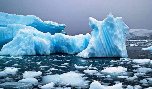 Арктика, оказывается, немолчит